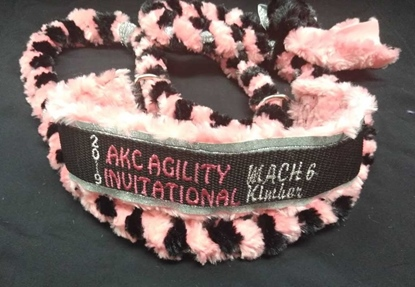 Invitational All Braided Leash